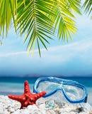 Het duiken masker onder de palm royalty-vrije stock afbeelding