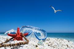 Het duiken masker onder een vliegende zeemeeuw stock afbeelding