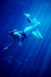 Het duiken met haaien #2 Stock Afbeeldingen