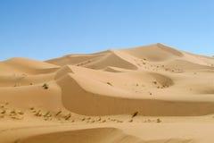 Het duin van de zandwoestijn in de Sahara Stock Afbeeldingen