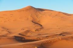 Het duin van het zand in de woestijn van de Sahara Stock Foto's