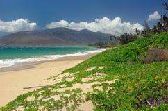 Het duin van het zand in Hawaï Stock Foto's