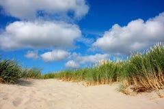 Het duin van het zand met gras Stock Afbeelding