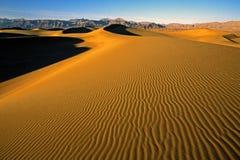 Het Duin van het zand onder de winterzonsondergang royalty-vrije stock foto's