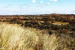 Het Duin van het Zand van de herfst Stock Afbeelding