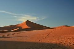 Het Duin van het zand, de Woestijn van de Sahara stock fotografie