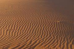 Het duinrimpelingen van het zand Royalty-vrije Stock Fotografie