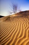 Het Duin van het Zand van de woestijn stock fotografie