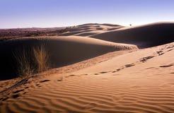 Het Duin van het Zand van de woestijn stock afbeelding