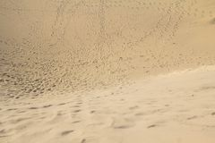 Het Duinwoestijn van het Maspalomaszand, Grote Canaria Stock Foto