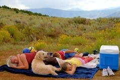 Het dutje van de middag Royalty-vrije Stock Foto