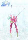Het dwars land ski?en Stock Fotografie