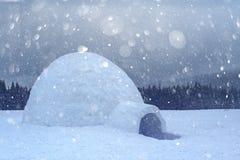 Het echte huis van de sneeuwiglo in de de winter Karpatische bergen royalty-vrije stock afbeelding