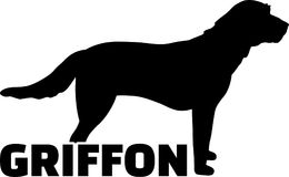 Het echte woord van het Griffonsilhouet Stock Foto