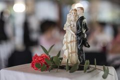 Het echtpaar in smokingkostuum en witte huwelijkskleding, met gesneden nam decoratie toe stock foto's