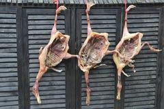 Het eendvlees droogt in openlucht, Hongcun, China Royalty-vrije Stock Afbeeldingen