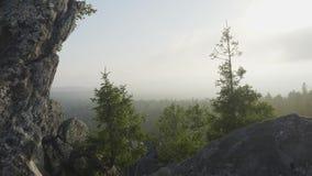 Het eenzame boom hangen van rotsen in de bergen Landschap met rots in bos bij zonsondergang Massieve rotsen en mening aan stock video