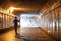 Het eenzame jonge geitje in de tunnel speelt royalty-vrije stock foto's