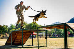 Het eerste kampioenschap van de Nationale Politie van de Oekraïne met globale hondmanagers Stock Foto's