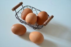 Het ei Royalty-vrije Stock Foto
