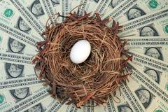 Het Ei en het Geld van het nest Stock Afbeeldingen