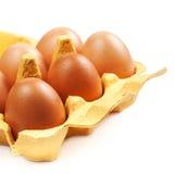 Het Ei van de bruine Eierenkip isoleerde dicht omhoog Stock Foto