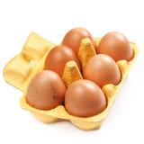 Het Ei van de bruine Eierenkip isoleerde dicht omhoog Royalty-vrije Stock Foto