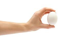 Het ei van de de holdingskip van de vrouwenhand Stock Foto's