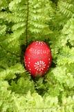 Het ei van de ester op groen Royalty-vrije Stock Fotografie