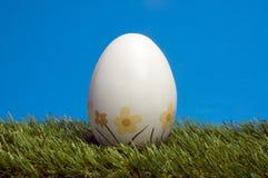 Het ei van de eter op blauwe achtergrond Stock Fotografie