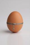 Het ei van de kip met ritssluiting Royalty-vrije Stock Foto
