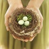 Het ei van het de holdingsnest van de vrouw Stock Foto's