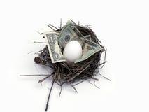 Het ei van het nest Royalty-vrije Stock Fotografie