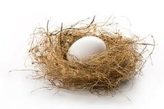 Het ei van het nest stock foto's
