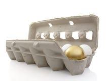 Het ei van het nest royalty-vrije stock foto