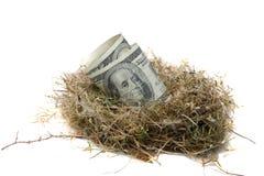 Het Ei van het nest Stock Afbeeldingen