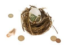 Het Ei van het nest Stock Fotografie
