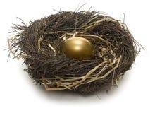 Het Ei van het nest Royalty-vrije Stock Afbeeldingen