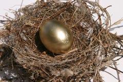 Het Ei van het nest Royalty-vrije Stock Foto's