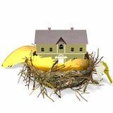 Het Ei van het Nest van onroerende goederen Royalty-vrije Stock Foto