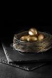 Het Ei van het pensioennest Royalty-vrije Stock Afbeeldingen