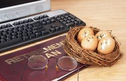 Het Ei van het pensioneringsnest stock fotografie