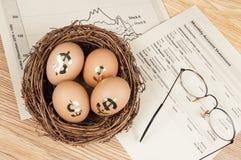 Het Ei van het pensioneringsnest royalty-vrije stock afbeelding