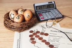 Het Ei van het pensioneringsnest stock foto