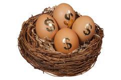 Het Ei van het pensioneringsnest Royalty-vrije Stock Foto