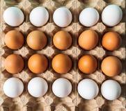 Het eierenpatroon op netto voor vlakke eieren, legt stock afbeeldingen