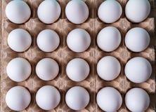 Het eierenpatroon op netto voor vlakke eieren, legt royalty-vrije stock foto
