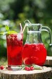 Het eigengemaakte bessensap in een glas en de kruik met frambozenredcurrant in de zomer tuinieren royalty-vrije stock fotografie