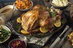 Het eigengemaakte Diner van Dankzeggingsturkije royalty-vrije stock afbeelding