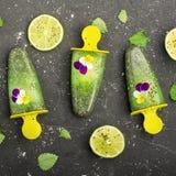 Het eigengemaakte vegetarische van de het fruitcitrusvrucht van de roomijsijslolly de pepermuntsap met chiazaden is verfraaid met Stock Fotografie